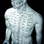 human model with meridian lines & acupunture points